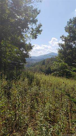 0 Whitson Branch Road, Bakersville, NC 28705 (#3549913) :: Carlyle Properties