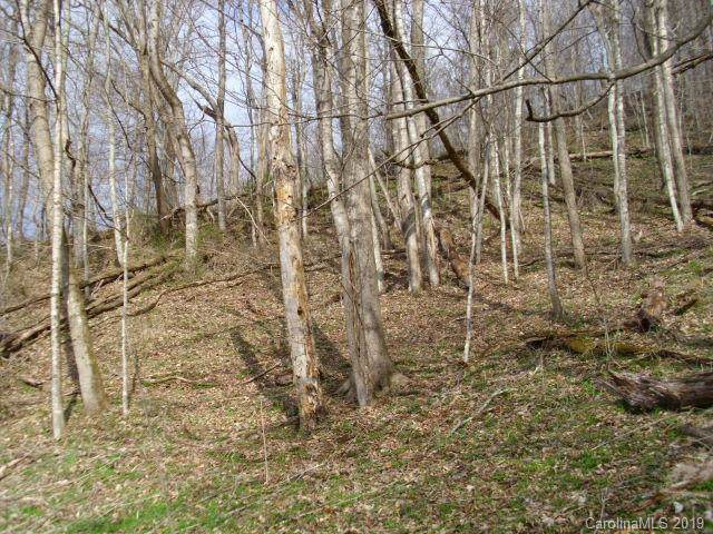 0 Lakewood Drive, Bakersville, NC 28705 (#3549960) :: Mossy Oak Properties Land and Luxury