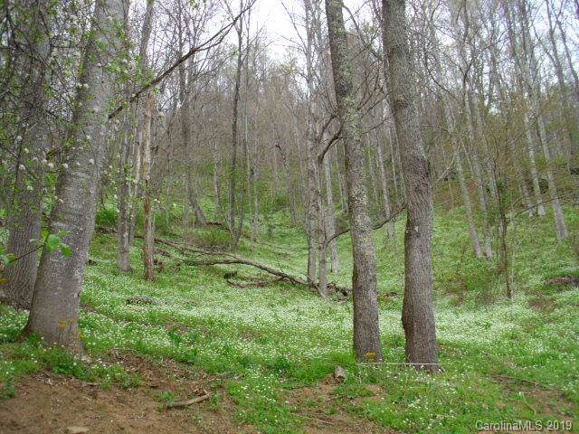 0 Lakewood Drive, Bakersville, NC 28705 (#3549966) :: Mossy Oak Properties Land and Luxury