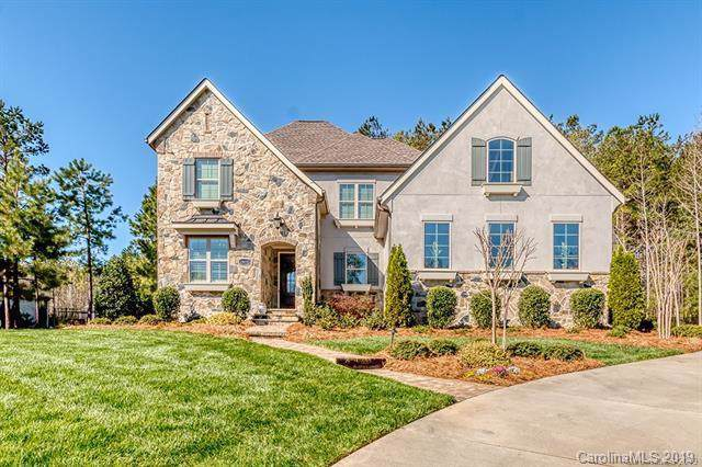 13418 Castleford Drive, Mint Hill, NC 28227 (#3550067) :: The Premier Team at RE/MAX Executive Realty