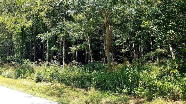 Beside 1785 Zacks Fork Road #14, Lenoir, NC 28645 (#3550257) :: Scarlett Property Group