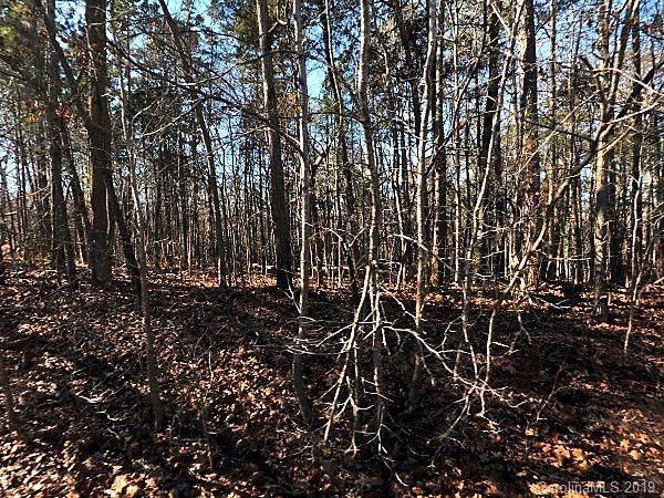 8801 Vagabond Road, Charlotte, NC 28227 (#3550380) :: Caulder Realty and Land Co.