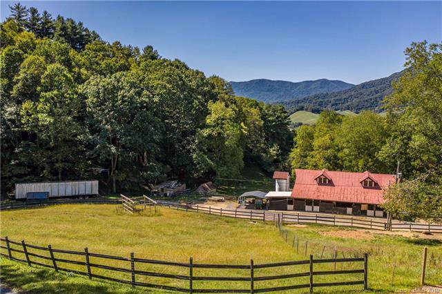 199 Safe Haven Road, Waynesville, NC 28785 (#3550496) :: Rinehart Realty
