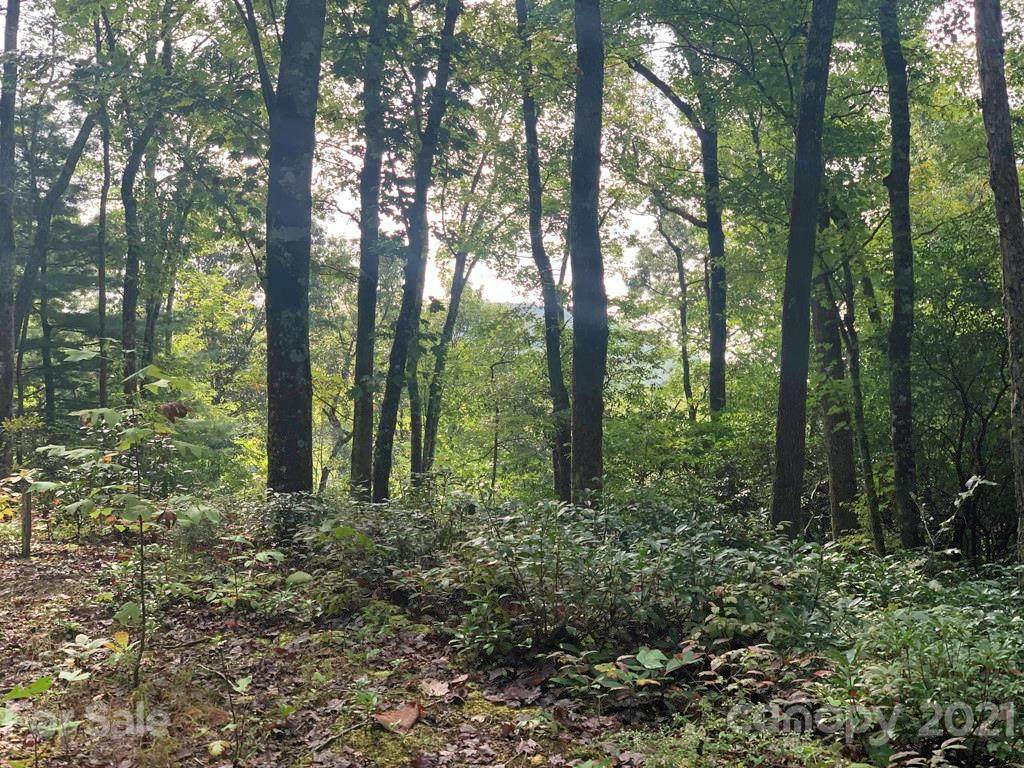 Lot 132 Green Hollow Lane #132, Brevard, NC 28712 (#3550678) :: IDEAL Realty