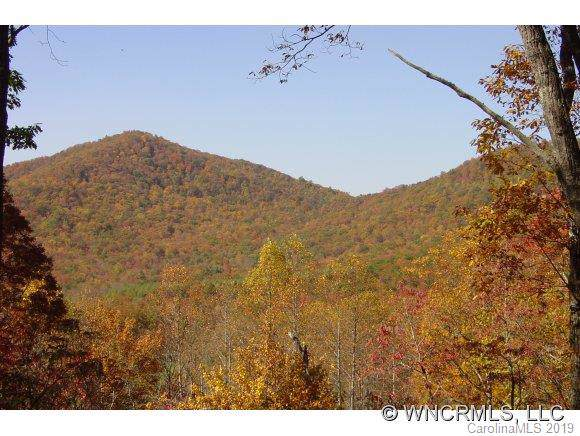 2 Wood Lily Trail #12, Arden, NC 28704 (#3550747) :: Mossy Oak Properties Land and Luxury