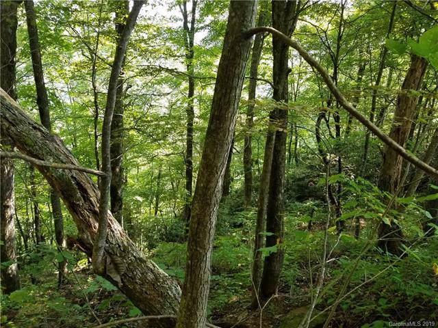 18 Little Celo Mount Mother Nature Drive #18, Burnsville, NC 28714 (#3551106) :: Puma & Associates Realty Inc.