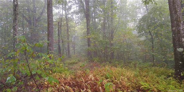 TBD Indian Camp Road #52, Rosman, NC 28772 (#3551713) :: Cloninger Properties