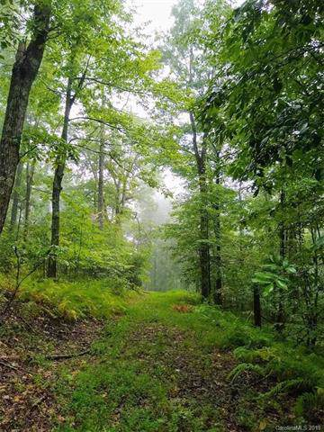 TBD Indian Camp Road #51, Rosman, NC 28772 (#3552073) :: Cloninger Properties
