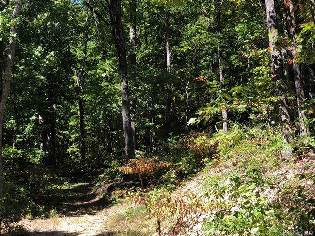 Lot #73 Marshall Ridge Road, Hendersonville, NC 28792 (#3552346) :: Rinehart Realty