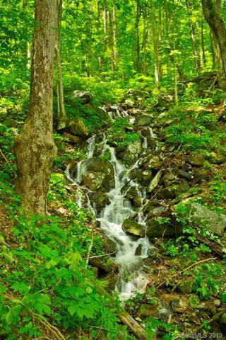 999 High Falls Drive, North Cove, NC 28752 (#3552459) :: Homes Charlotte