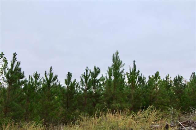 93+/- Acres Neelley Road, Pleasant Garden, NC 27313 (#3553419) :: Mossy Oak Properties Land and Luxury