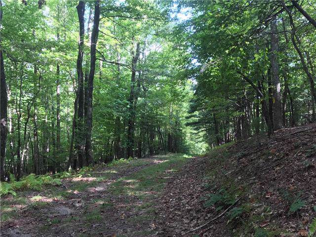 220 Cedar Creek Drive B-1, Cedar Mountain, NC 28718 (#3553967) :: Stephen Cooley Real Estate Group