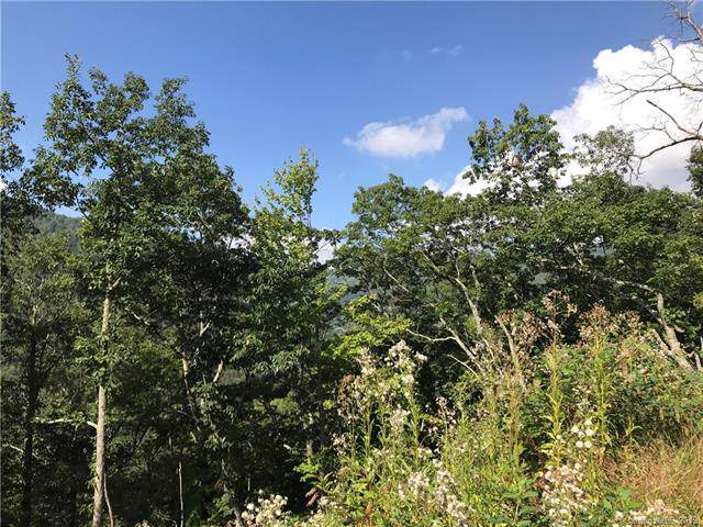Lot 25 Cub Trail #25, Maggie Valley, NC 28751 (#3554258) :: Keller Williams South Park