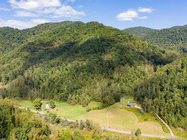1365 Nc 63 Highway, Hot Springs, NC 28743 (#3554336) :: Scarlett Property Group