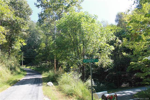 110 Courtney Lane, Waynesville, NC 28785 (#3555638) :: Besecker Homes Team