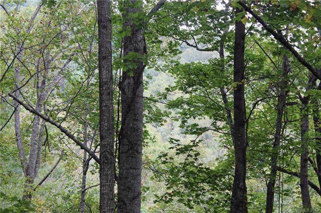 00 Alpine Ridge #10, Canton, NC 28716 (#3555714) :: Carver Pressley, REALTORS®
