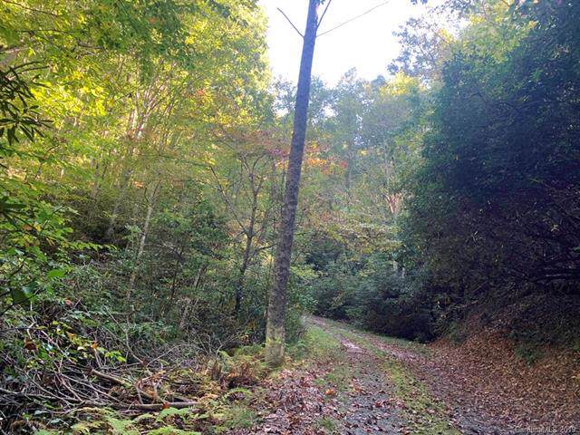 TBD Pridmore Hollow Road - Photo 1