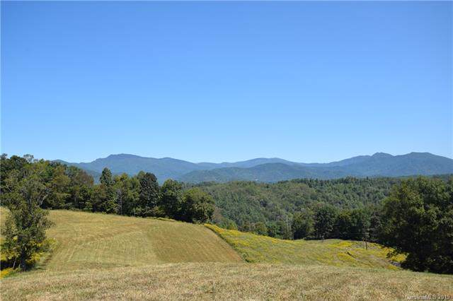 897 Cow Branch Branch, Green Mountain, NC 28740 (#3556099) :: Rinehart Realty