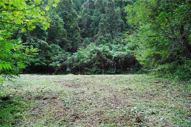 TBD Vine Drive #892, Old Fort, NC 28762 (#3556789) :: Robert Greene Real Estate, Inc.