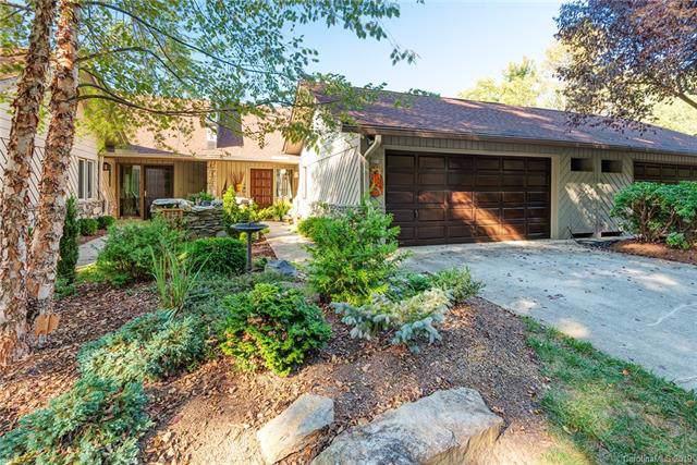 703 Timber Lane, Asheville, NC 28804 (#3556847) :: Homes Charlotte