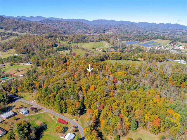 TBD Jones Road, Leicester, NC 28748 (#3557071) :: Homes Charlotte