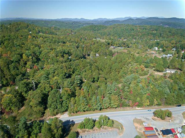 956 Ozone Drive, Saluda, NC 28773 (#3557382) :: Stephen Cooley Real Estate Group