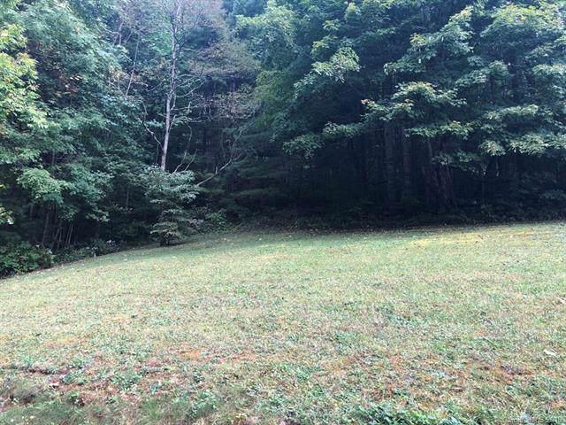 Lot 9 Balsam Meadows Road, Waynesville, NC 28786 (#3557732) :: Keller Williams Professionals