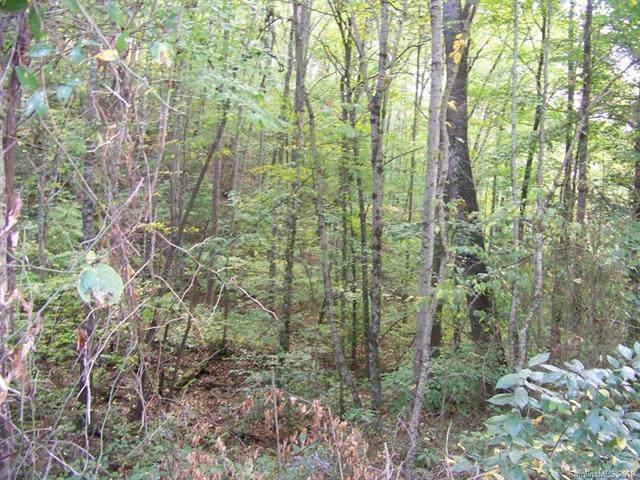 00 Scarlet Ridge #40, Cullowhee, NC 28723 (#3558300) :: Caulder Realty and Land Co.