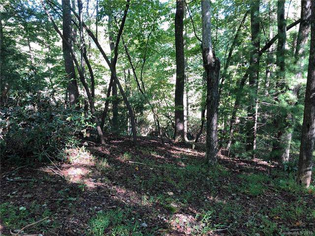 LOT B Echo Lane, Saluda, NC 28773 (#3558876) :: SearchCharlotte.com