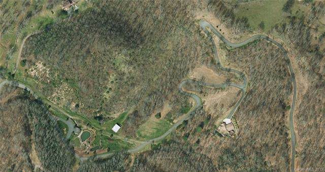 0000 Red Wolf Run, Mars Hill, NC 28754 (#3559146) :: Carlyle Properties