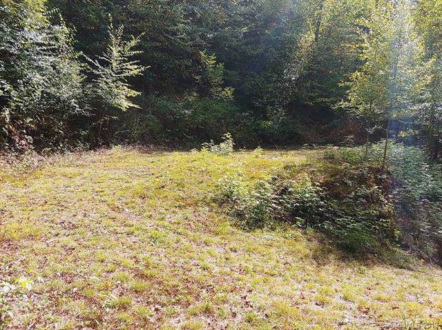 Lot 6 Spruce Flats Road, Maggie Valley, NC 28751 (#3559408) :: The Ramsey Group