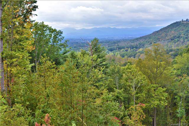 78 Hawtree Court #263, Weaverville, NC 28787 (#3560005) :: MartinGroup Properties