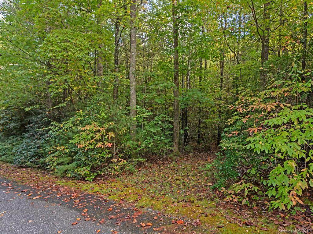 Lt 306 Old Spring Road, Brevard, NC 28712 (#3560235) :: Homes Charlotte