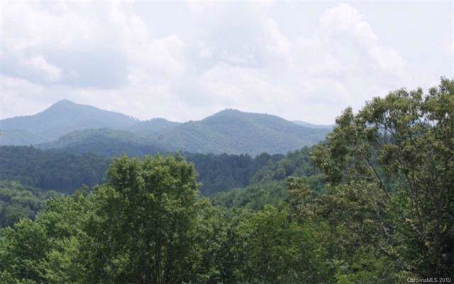 00 Grant Chapman Road, Webster, NC 28788 (#3560303) :: The Ramsey Group