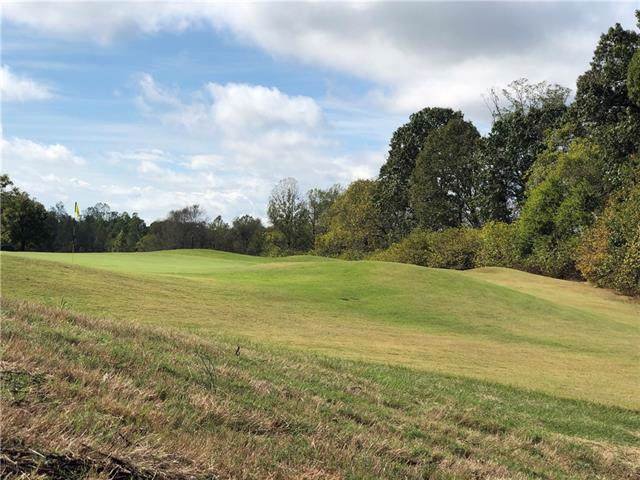 3791 West Nine Drive #60, Conover, NC 28613 (#3560330) :: Caulder Realty and Land Co.