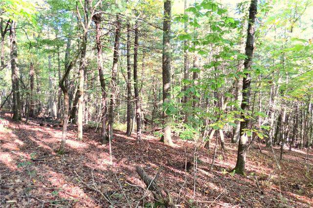 530 Slick Rock Road Tract 1, Brevard, NC 28712 (#3560398) :: Mossy Oak Properties Land and Luxury