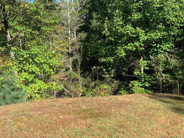 Lot 77 Peppervine Circle, Rosman, NC 28772 (#3560427) :: Scarlett Property Group
