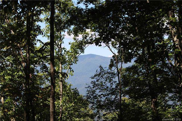 324 Boar Ridge Road #126, Sylva, NC 28779 (#3561003) :: MartinGroup Properties