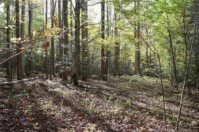 00 Poplar Creek Road, Bakersville, NC 28705 (#3561536) :: Rhonda Wood Realty Group