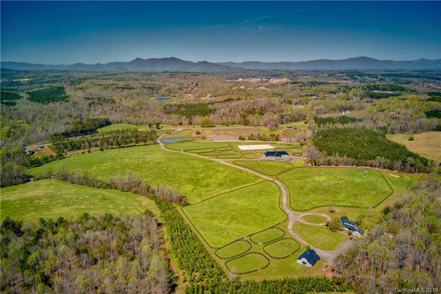 TBD Coxe Road, Tryon, NC 28782 (#3561688) :: Caulder Realty and Land Co.