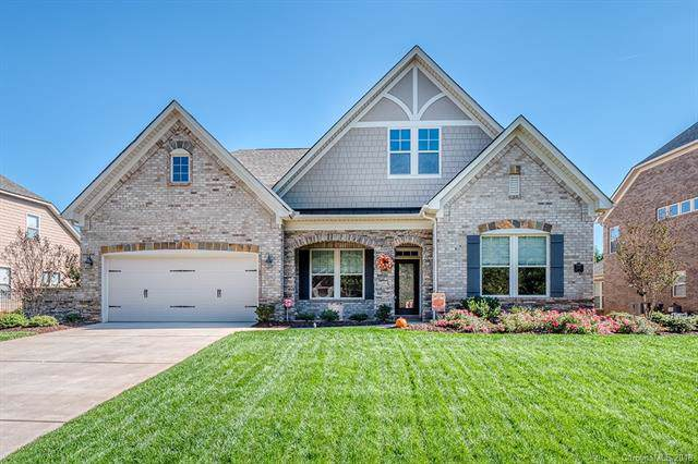 11511 Brangus Lane, Mint Hill, NC 28227 (#3561697) :: Stephen Cooley Real Estate Group