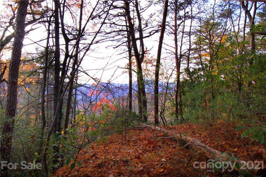 Tract 2 Bear Pen Hollow Road, Brevard, NC 28712 (#3561852) :: Homes Charlotte