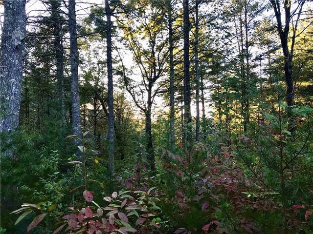 1211 Winding Creek Way Lot 309, Lenoir, NC 28645 (#3562592) :: Carver Pressley, REALTORS®