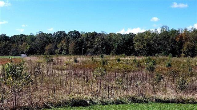 145 Buck Fraley Road, Cherryville, NC 28021 (#3563326) :: Stephen Cooley Real Estate Group