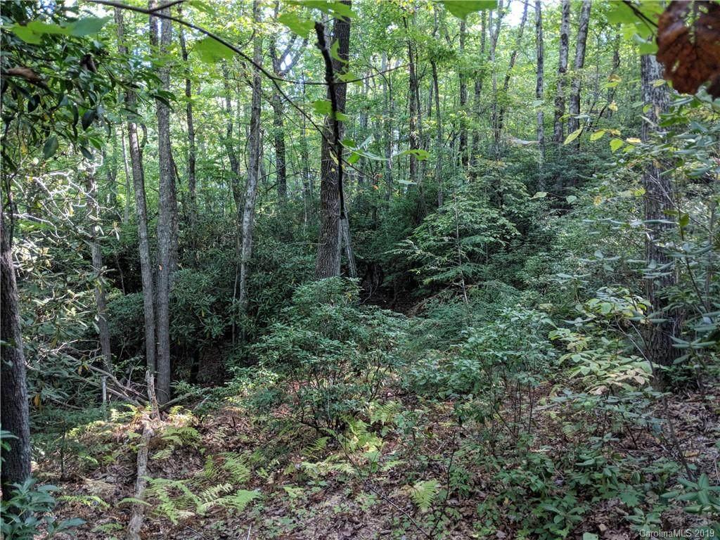 Lot 13 Rolling Ridge Trail - Photo 1
