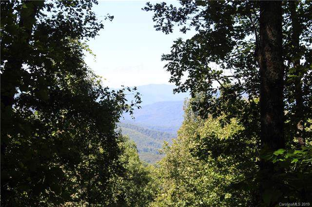 125 Boar Ridge Road #125, Sylva, NC 28779 (#3563507) :: MartinGroup Properties