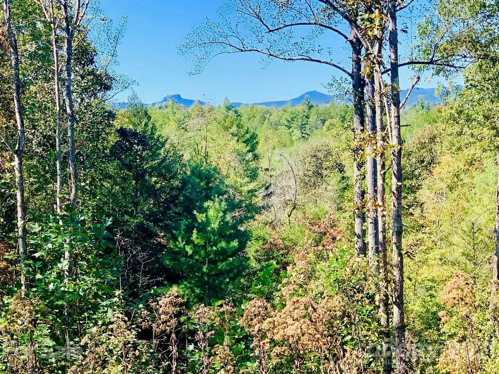 1488 High Valley Way Lot 912, Lenoir, NC 28645 (#3563770) :: Scarlett Property Group