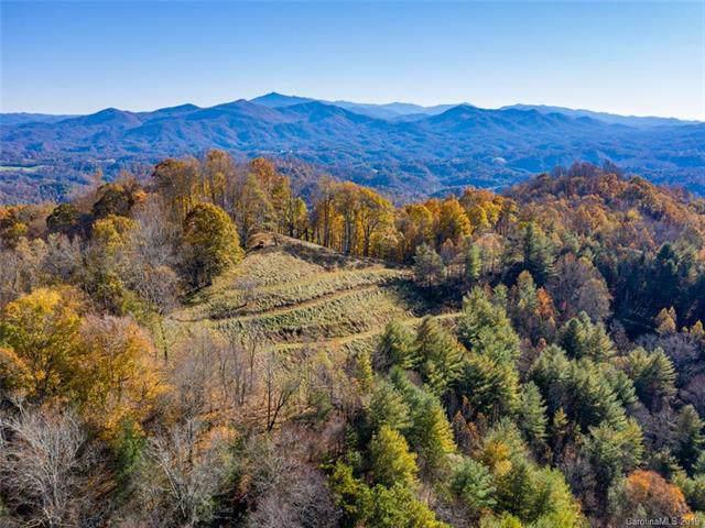 1472 Brummetts Creek Road, Green Mountain, NC 28740 (#3563774) :: Carlyle Properties