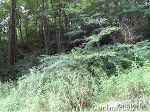 LOT 39 Coyote Hollow Road, Waynesville, NC 28785 (#3563901) :: Keller Williams Professionals