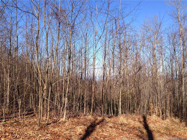 Lot4 Apple Blossom Road #4, Hendersonville, NC 28792 (#3564252) :: Mossy Oak Properties Land and Luxury